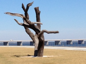 Remnants of Hurricane Katrina have been captured by art along the Gulf Coast in the form of wood carvings. This Angel Tree stands across from the 200 North Beach Restaurant as a haunting reminder of the 2005 storm.
